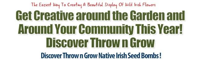 Seed Bomb Ireland
