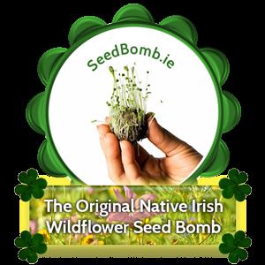 The Original Native Irish Wildflower Seed Bomb